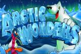 Arctic Wonders