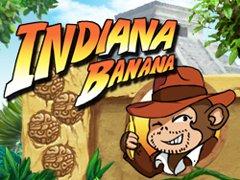 Indiana Banana