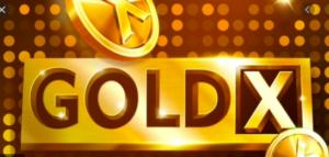 Image of Gold X slot