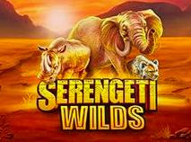 Image of Serengeti Wilds slot